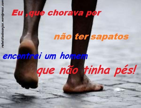 *SURPRESAS DO CAMINHO*